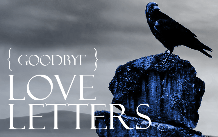 A blue and black raven perched on a rock in a sad gray landscape with the words goodbye love letters written on top